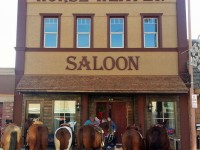 Saloonhorses_edited-2